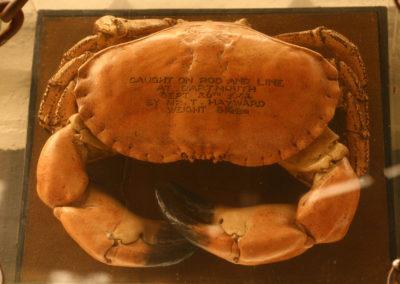 cullins yard crab